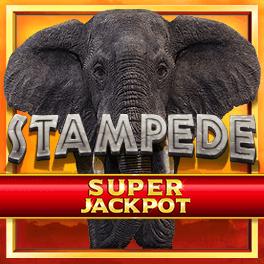 Stampede Super Jackpot